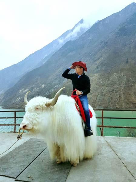Những chú bò Yak lông trắng sẵn sàng phục vụ khách tham quan. Ảnh: Thuận Phong Travel.