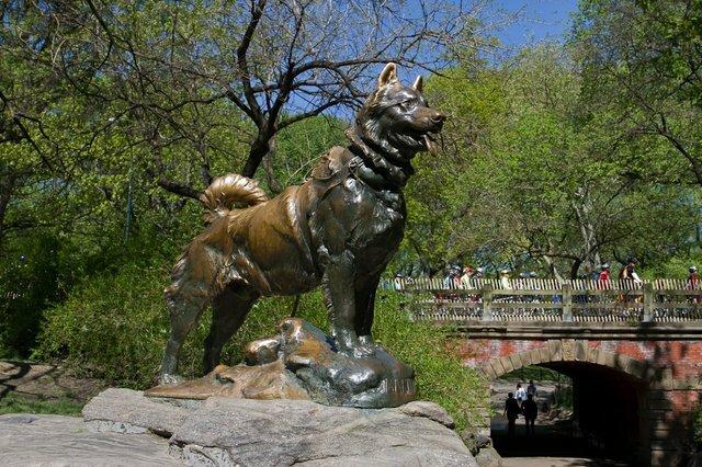 Tượng đồng tạc chó Balto trong công viên Trung tâm. Ảnh: Central Park.