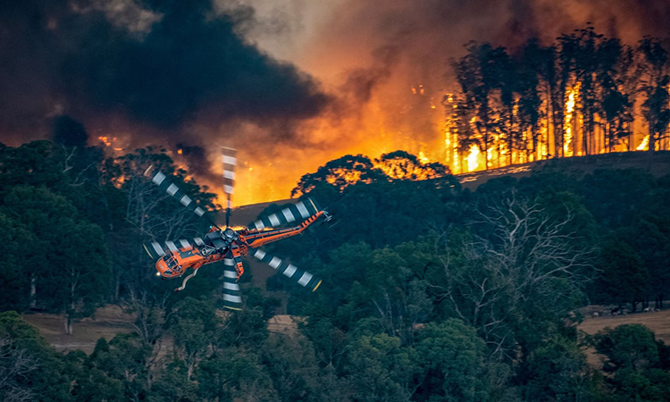 Các vụ cháy rừng đã tàn phá một số khu vực du lịch quan trọng của ở bang New South Wales vàVictoria. Ảnh: Sở Môi trường, Đất, Nước và Quy hoạch Australia.