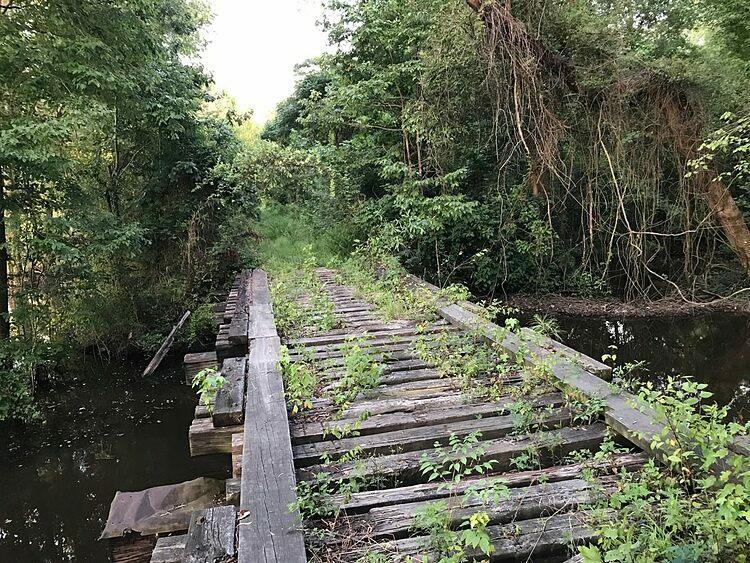 Đường ray hoàn toàn bị loại bỏ. Mùa hè năm 2019, cây cối phủ xanh con đường. Ảnh: Geerkers.