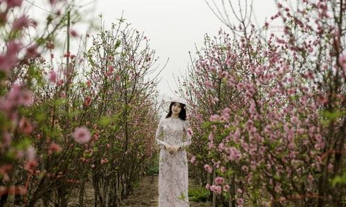 5 điểm chụp ảnh hút khách trước Tết - Tết Canh Tý 2020