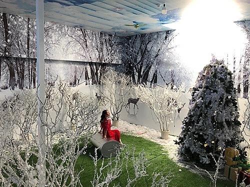 Vườn thượng uyển bay của Đà Lạt là mô phỏng không gian vườn thượng uyển ngày xưa nơi cung đình với nhiều loại cây, hoa.