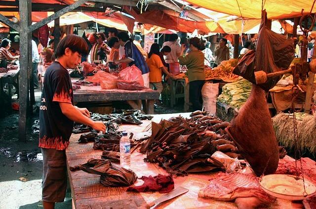 Một tiệm bán dơi nướng trong chợ Tomohon. Ảnh:sensaos/Flickr.