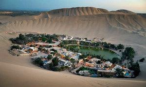 Ốc đảo xanh lọt giữa sa mạc