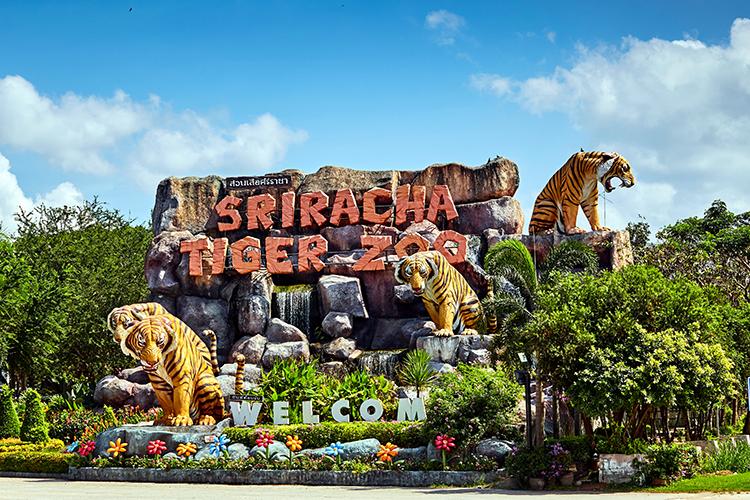 Vườn thú Sriracha Tiger Zoo. Ảnh: Ewa Studio/Shutterstock.