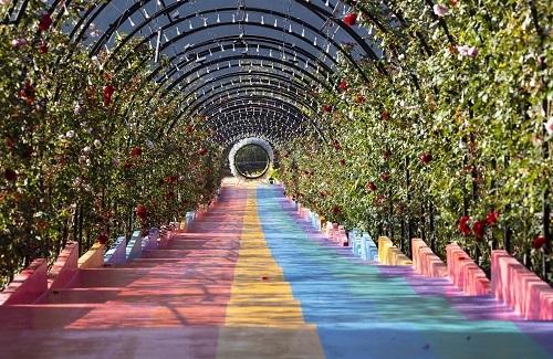 Đến thăm Vườn Thượng uyển bay, du khách sẽ được chiêm ngưỡng con đường hoa hồng dài 108m, được thiết kế theo hình mái vòm. Bước trên con đường hoa, bạn như đang lạc lối trong thế giới cổ tích lãng mạn.