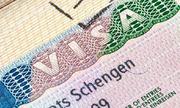 Visa châu Âu cho khách làm nghề tự do