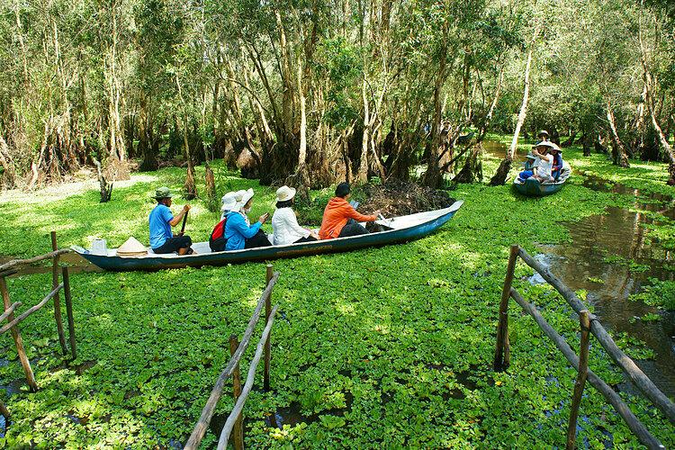 Rừng tràm Trà Sư, điểm du lịch nổi tiếng miền Tây tại An Giang thu hút nhiều khách tham quan. Ảnh: Xuan Huong Ho.