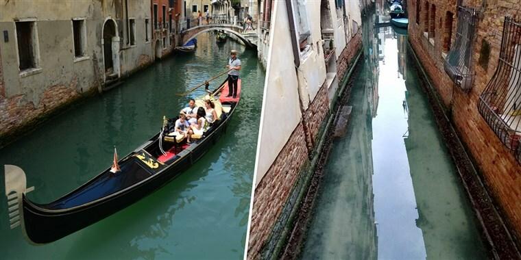 Nước kênh trong vắt với những đàncá nhỏ bơi lội là những điều mà trước đây khi Venice đông nghịt du khách, bạn sẽ khó thấy được. Ảnh: Twitter.