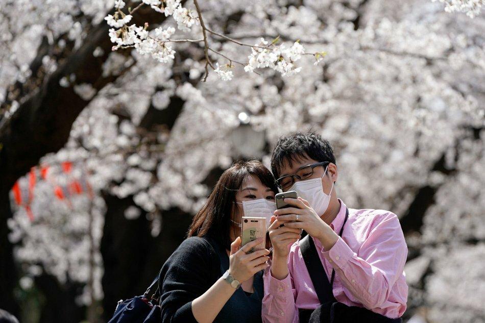Khách tham quan đeo khẩu trang khi chụp hoa anh đào trong công viên Ueno ngày 22/3. Ảnh: Franck Robichon/EPA-EFE.