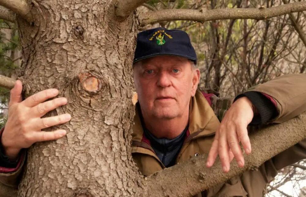 Bằng việc đi dạo trong rừng, tâm trí của bạn sẽ được thư thái hơn và giúp bạn ngừng lo nghĩ về những vấn đề hàng ngày của cuộc sống, Eysteinsson nói. Ảnh:Throstur Eysteinsson/Icelandic Forest Service.