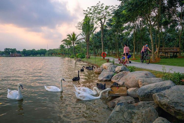 Cong vien Ho Thien Nga Ecopark