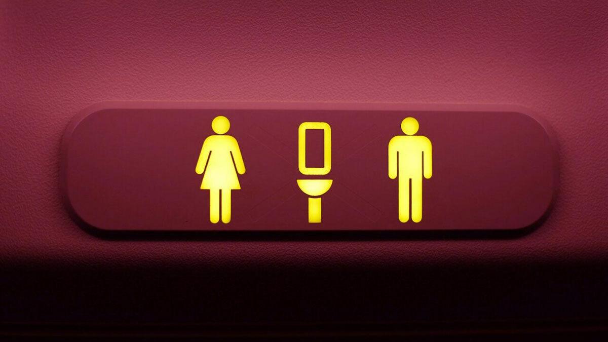 Theo hãng hàng không, hành khách đều được phép sử dụng nhà vệ sinh khi đi máy bay, nhưng sẽ lần lượt từng người một rời khỏi chỗ. Ảnh: Foxnews.