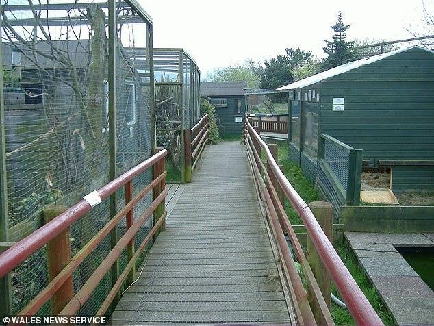 Tracy và Dean mua lại vườn thú này với giá 625.000 bảng để bắt đầu cuộc sống trong mơ cùng gia đình. Nhưng cặp vợ chồng này sớm nhận ra đó là một sai lầm. Ảnh:Wales News Service.