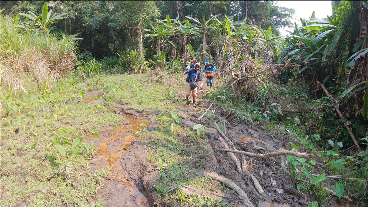 Tour trekking luôn rình rập những hiểm nguy. Thậm chí, dễ gặp phải rắn hay vắt lá khi di chuyển trong rừng. Ảnh: Phan Nguyên.