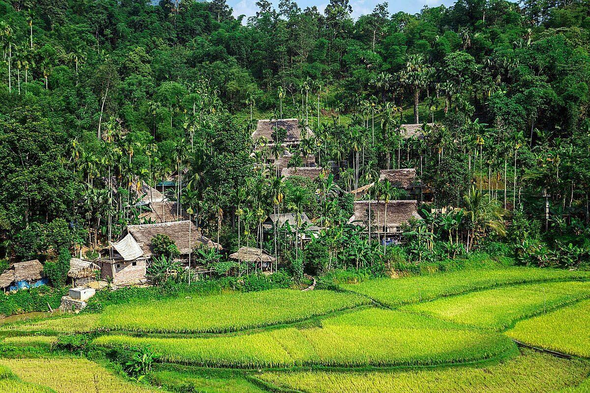 Bản làng, ruộng bậc thang, rừng nguyên sinh là những khung cảnh đặc trưng ở Pù Luông. Ảnh: Shutterstock/Ovu0ng.