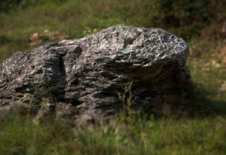 Hòn đá hình con cóc ở gần làng được nhiều người tin rằng đây là một vị thần, canh cho ngôi làng không có muỗi gần một thế kỷ nay. Ảnh: Tipsmake.