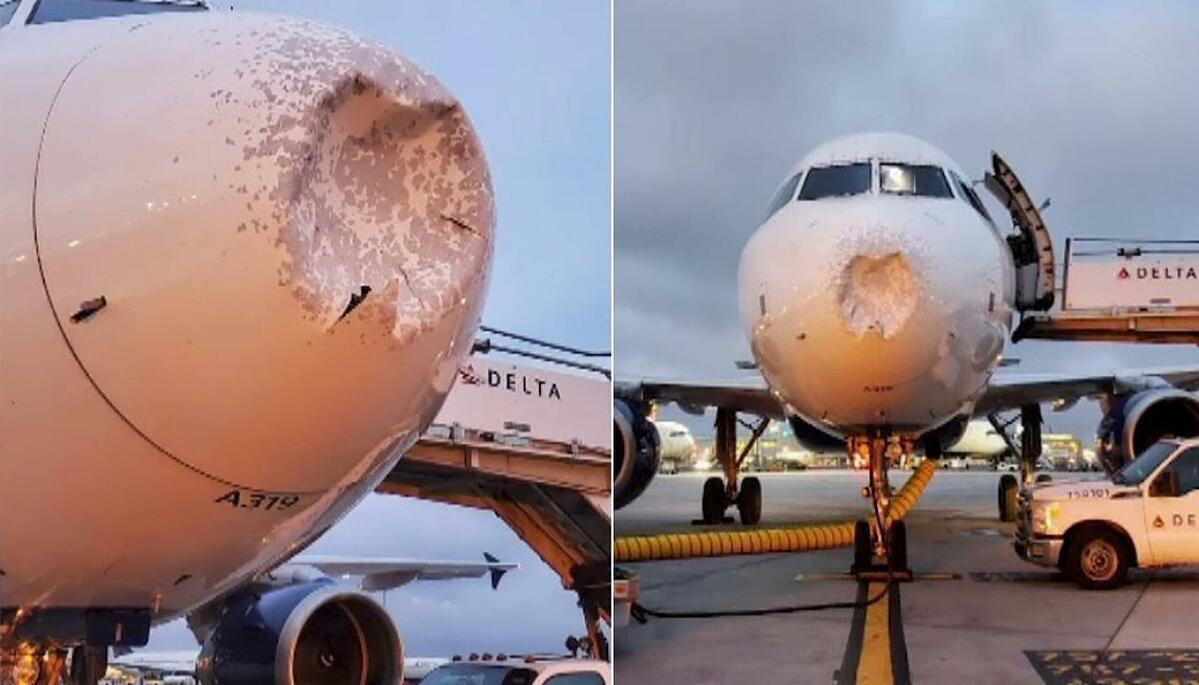 Mũi của chiếc máy bay Airbus A319 bị hư hại. Ảnh: Newshub.