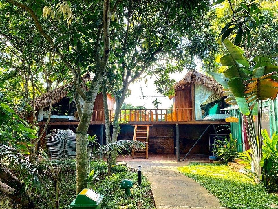 Khuôn viên rợp bóng cây xanh ở May Tropical. Ảnh: Fanpage May Tropical Villas.