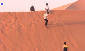 Người Saudi làm gì khi không thể du lịch nước ngoài?