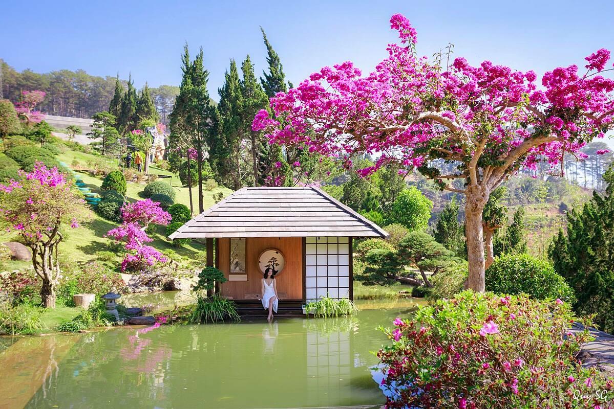 Với diện tích 20.000 m2, QUE Garden được bài trí tinh tế bằng các cậu cây bonsai đủ kích cỡ cùng nhiều vườn hoa đầy sắc màu và các tiểu cảnh sinh động. Sự kết hợp của cây bonsai, những thảm cỏ xanh mướt và hồ cá khiến bạn cảm giác như đi lạc vào một khu vườn Nhật Bản. Ngoài ra, bạn tới đây có thể tham quan hồ nước nuôi hàng trăm cá koi thuộc nhiều giống khác nhau. Không chỉ là nơi chụp hình, check-in, trong khuôn viên khu du lịch còn có cà phê sân vườn, nơi bạn có thể ngồi nhân nhi đồ uống, ngắm núi đồi và đàn cá koi bơi lội.   Điểm du lịch này nằm trên đoạn đèo Mimosa, phường 10, TP Đà Lạt. Vé vào cửa là 50.000 đồng/ người. Giờ mở cửa từ 7h đến 17h hàng ngày.