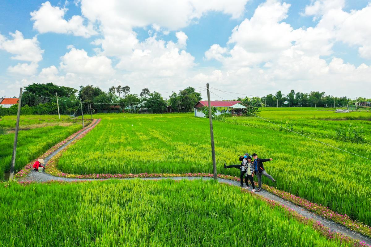 Con đường hoa mười giờ cách Sài Gòn 20 km - 14