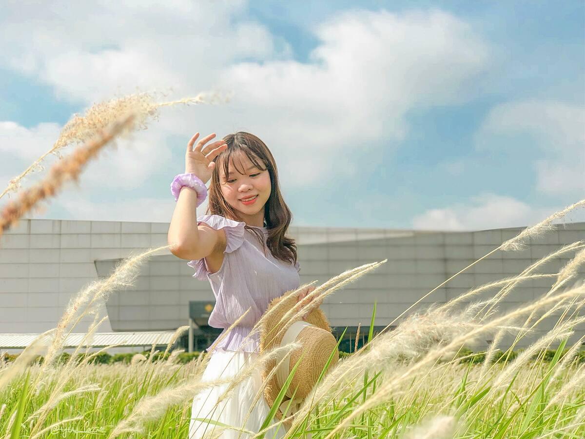 Đoạn đường Nguyễn Văn Huyên kéo dài ở Starlake - chung cư Ngoại Giao Đoàn (Bắc Từ Liêm) khoảng 2 tháng gần đây thành điểm check-in được nhiều bạn trẻ săn tìm vì có 3 đồng cỏ lau trắng trải rộng mênh mông. Ảnh: Ngân Hà