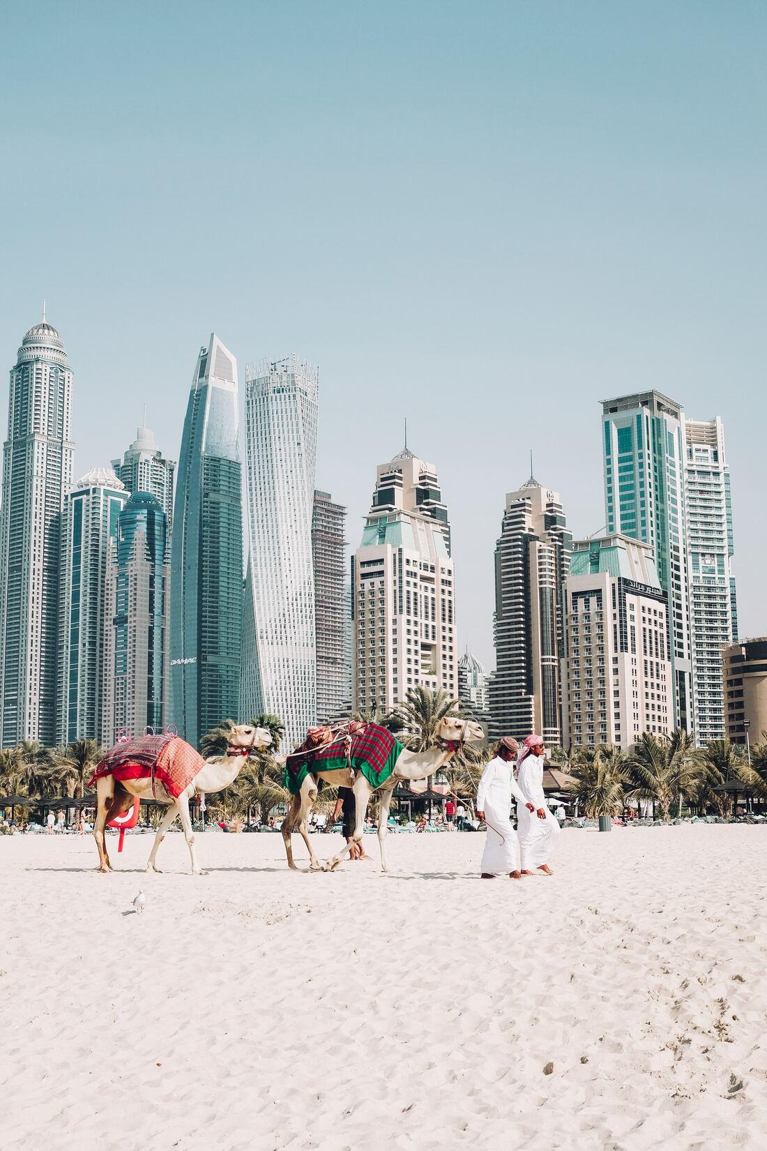 Du khách đến Dubai phải mua bảo hiểm y tế đầy đủ và cần ký vào tờ khai về việc chịu mọi chi phí nếu mắc bệnh tại đây. Ảnh: Fredrik Ohlander/Unsplash