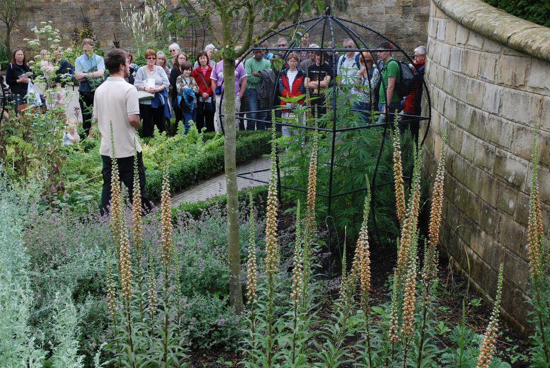 Ngày nay khu vườn độc dược thu hút tới 600.000 lượt khách tham quan một năm. Ảnh: Margaret Whittaker