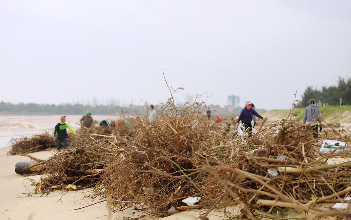 Người dân kéo nhau ra bờ biển Nhật Lệ nhặt củi và gỗ. Ảnh: Đức Hùng