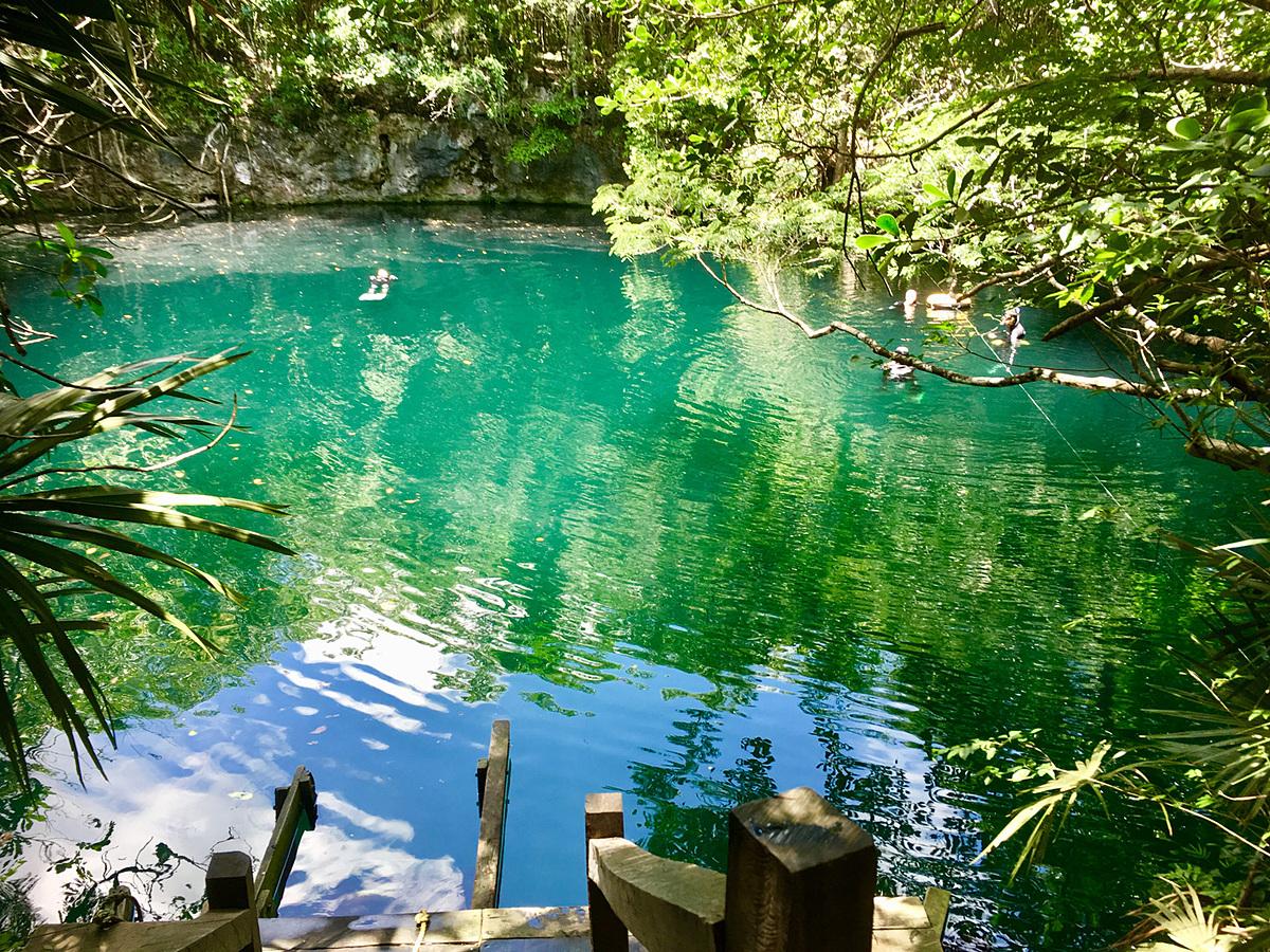 Lối dẫn vào hang Angelita Cenote như một ao nước trong xanh giữa rừng. Ảnh: Hammocks & Ruins