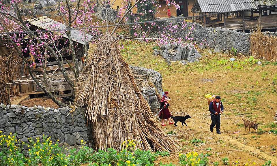 Khảo sát mức độ hài lòng của khách du lịch Hà Giang