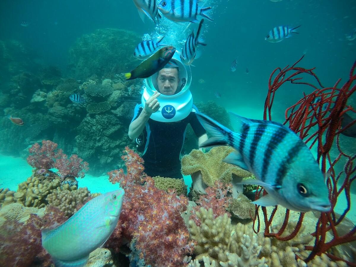 Vlogger Hoàng Nam lặn ngắm san hô ở Phú Quốc - 10