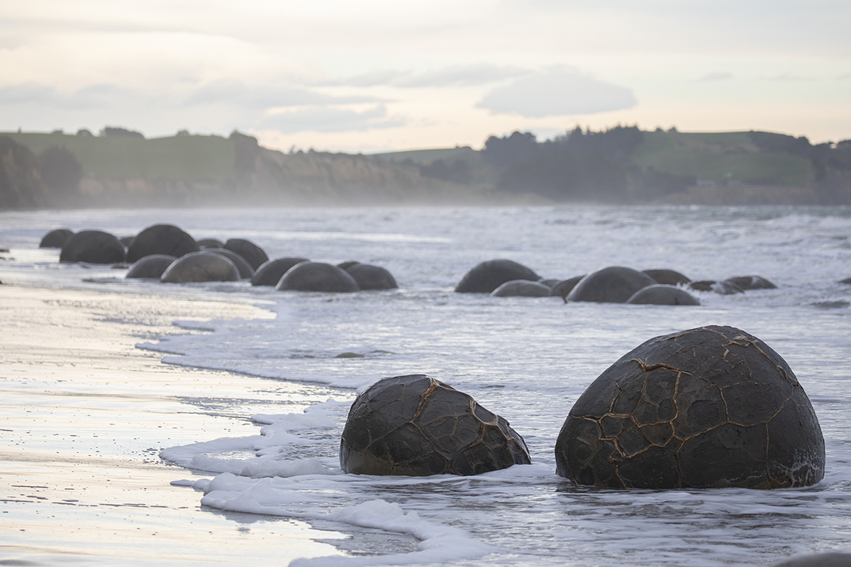 Những tảng đá Moeraki lớn có đường kính tới 3 mét và nặng vài tấn trong khi những tảng đá nhỏ hơn có thể có kích thước chỉ bằng một quả bóng đá. Ảnh: VCG