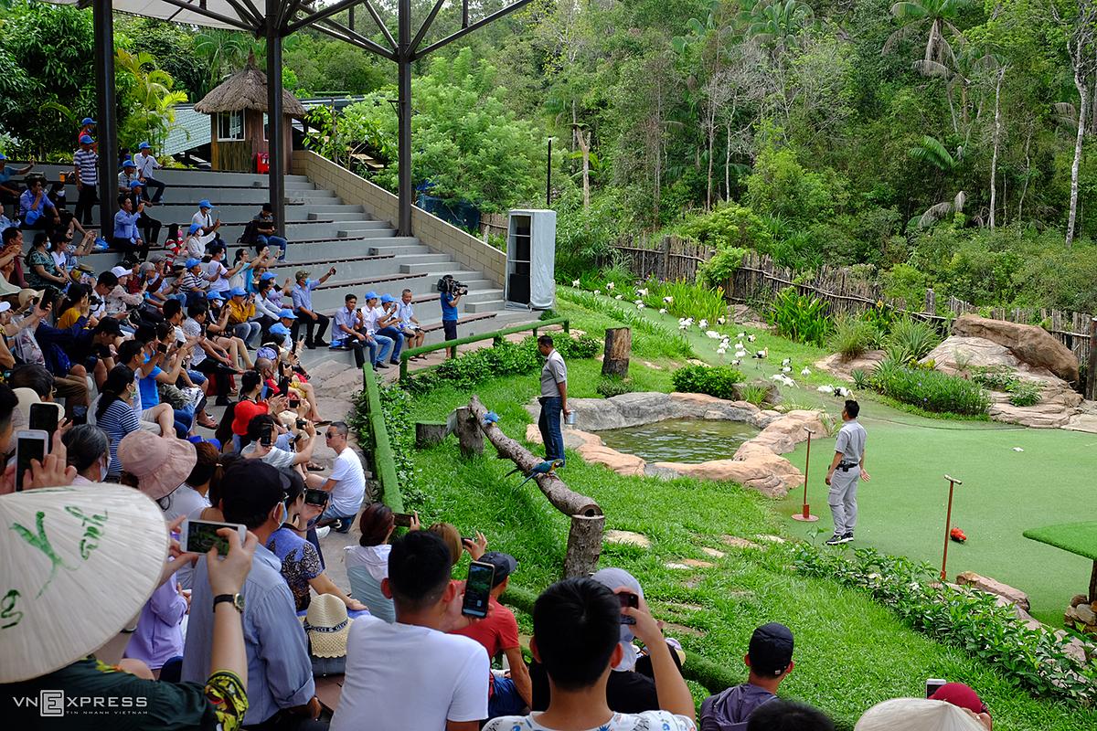 Du khách sẽ nhận được nhiều ưu đãi khi đặt dịch vụ phòng lưu trú tại Phú Quốc từ giờ đến quý II/2021. Trong ảnh, du khách xem chim biểu diễn tại Safari Phú Quốc. Ảnh: Khánh Hòa
