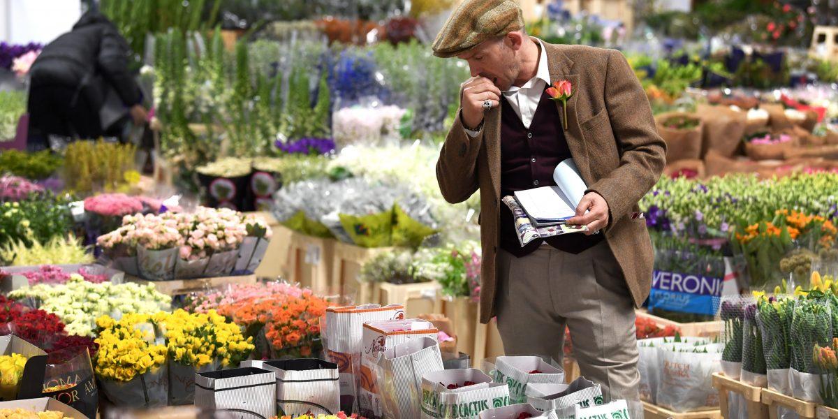 Chợ được thành lập chính thức vào năm 1670. Người dân đến đây mua hoa để phục vụ trong đám cưới, sinh nhật, đám tang hàng trăm năm trước. Chợ chuyển từ Covent Garden đến Battersea vào năm 1974 do thiếu mặt bằng, nhưng hoa, trái cây và rau vẫn được chuyển từ đây đi khắp nước. Ảnh: Nineelms london