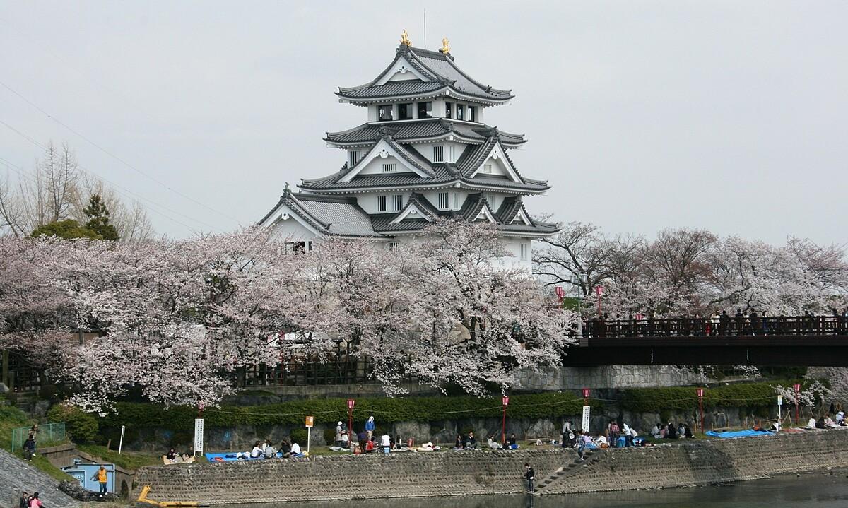 Ngày nay, lâu đài cũng là một trong những địa điểm tốt nhất để ngắm hoa anh đào vào mùa xuân, vì các bờ sông được bao phủ bởi hàng trăm cây anh đào. Ảnh: Alpsdake/Wiki