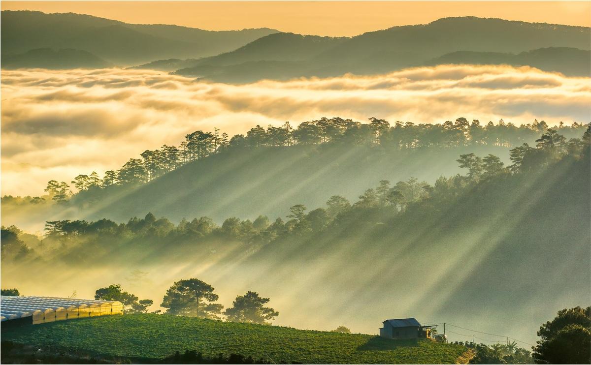 Du khách được hưởng ưu đãi khi đăng ký tour Tết 2020. Ảnh: Lữ Hành Việt.