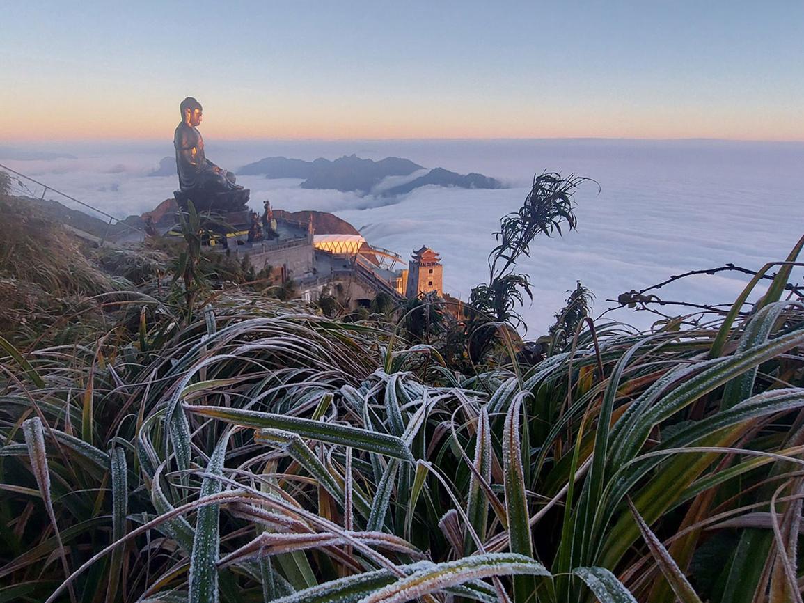 Lớp băng tuyết phủ trên các ngọn cây trong khu du lịch. Ảnh: Sun World Fansipan Legend