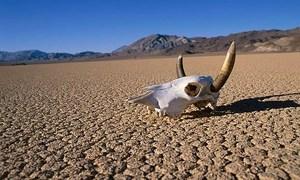 Miền đất nóng tới 57 độ C