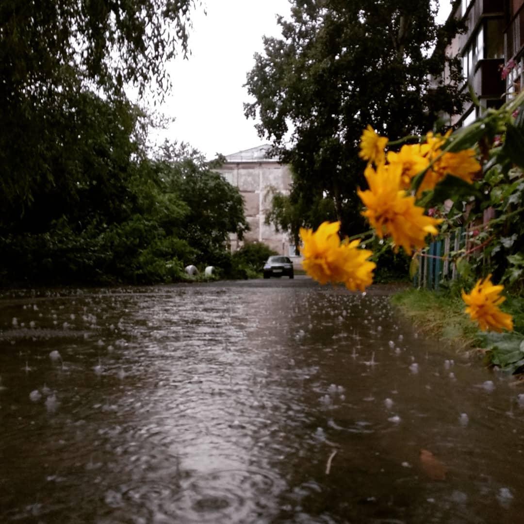 Vũng nước nằm cạnh nhà số 10 phố Tikhookeanskaya, thành phố Yuzhno-Sakhalinsk. Ảnh: Instagram
