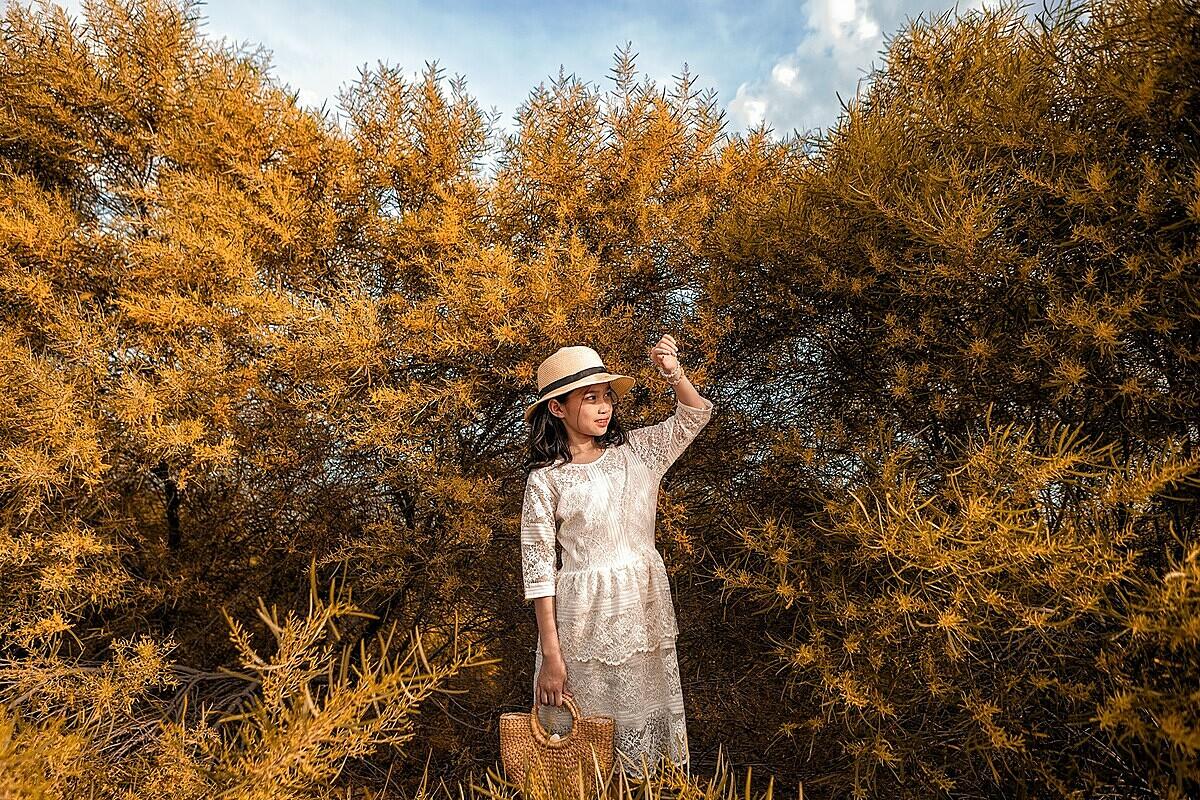 Một nhiếp ảnh gia khác hoạt động tại Mũi Né, anh Sơn Lê cho biết, trong khoảng thời gian này chỉ tính riêng khách của anh, mỗi tuần có tầm 50 người yêu cầu được chụp ảnh với hoa keo lá tràm.