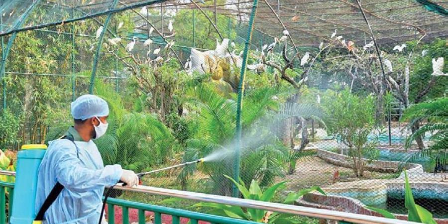 Vườn thú phải đóng cửa từ tối 9/1 cho đến khi có yêu cầu mới. Ảnh: PTI