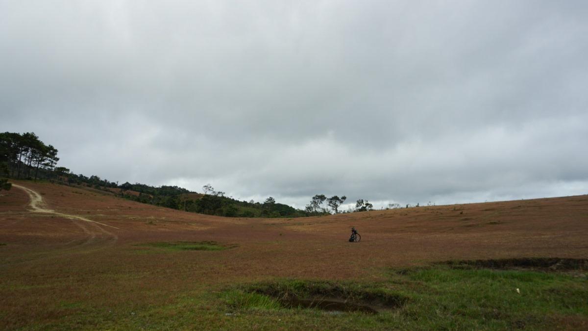 Cỏ hồng chỉ thật sự xuất hiện khi có đủ sương và nắng. Thời gian để cỏ hồng xuất hiện rơi vào khoảng 5h - 7h. Nắng càng to, màu hồng của cỏ sẽ càng đậm. Thời điểm chụp ảnh đẹp nhất là khi có đủ nắng. Nên có những trường hợp du khách đến không đúng thời điểm mới lỡ mất đồi cỏ hồng. Ảnh: Bao Le