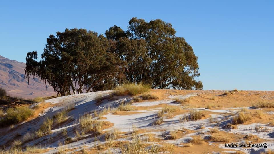 Trận tuyết rơi đầu tiên ở thị trấn Aïn Séfra được ghi lại vào năm 1979, tiếp theo là vào tháng 12/2016 và tháng 1/2018 khi một phần sa mạc Sahara bị bao phủ bởi lớp tuyết dày 40 cm.