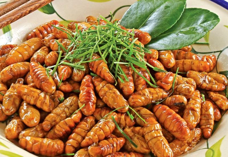 Bên cạnh đó, trong các loại ấu trùng, nhộng tằm chiên là món ăn cũng được người Việt yêu thích vì giàu protein. Dân miền Bắc đặc biệt thích nhộng của những con tằm chuyên ăn dâu để nhả tơ dệt vải. Để chế biến món ăn họ chiên lên và gia giảm với muối hoặc mắm. Du khách dễ thấy món này nhất khi ăn các quán cơm bình dân. Ảnh: Medium