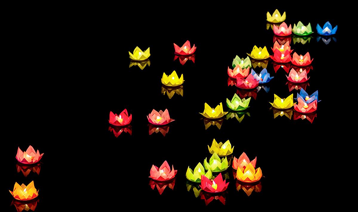 Thả đèn hoa đăng trên hồ sen là một trong những trải nghiệm thú vị ở Meliá Hồ Tràm.