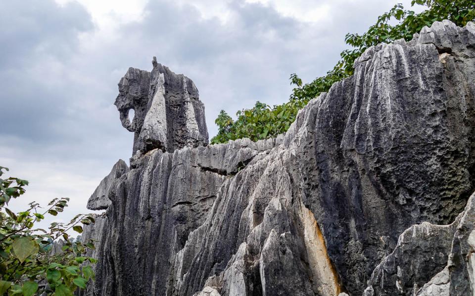Rừng Đá Lớn, Rừng Đá Nhỏ và Rừng Đá Naigu có vô vàn khối đá với hình dạng khác nhau, từ hình thù động vật, thực vật đến hình người. Một số khối đá rất mịn với hình thù tinh tế, một số gồ ghề, mỗi khối đều độc nhất vô nhị. Ảnh: Kaspersky
