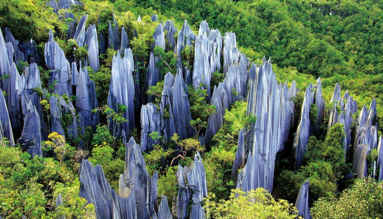 Hai trong số những khu rừng đá nhỏ, rừng đá Naigu và làng Suogeyi, là một phần của Karst Nam Trung Quốc - khu vực đa dạng sinh học nổi tiếng về karst đá vôi đã trở thành Di sản Thế giới UNESCO vào năm 2007. Ảnh: China Easy Tour