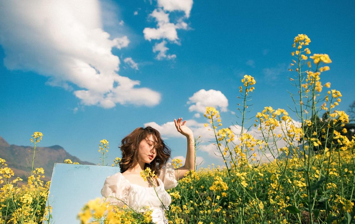 Tuần qua, thời tiết nắng đẹp giúp vườn hoa thêm rực rỡ sắc vàng. Tại đây có thêm tiểu cảnh như ghế ngồi, gương... để du khách chụp ảnh. Trên ảnh là Kỳ Duyên. Ảnh: Dương Quốc Hiếu.